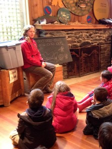 Learning about insects at Goldstream Nature House