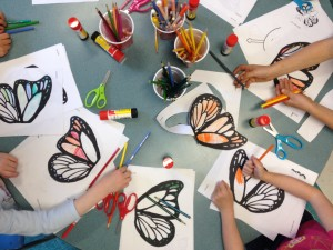 Butterfly mania in the classroom